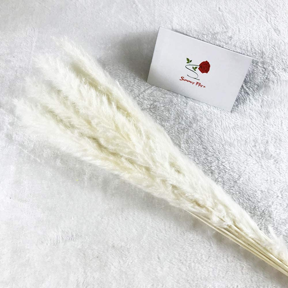 Pampas Grass Decor Dried Flowers Plants 17inch Natural Dried Flowers Pampas Grass 30pcs ,Phragmites Bouquet for Floral Arrangements Home Decor (White)