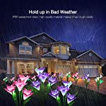 Solar Lights Outdoor [4 Pack], WdtPro Upgraded Solar Garden Lights with 16 Bigger Lily Flowers and Wider Solar Panel, 7…