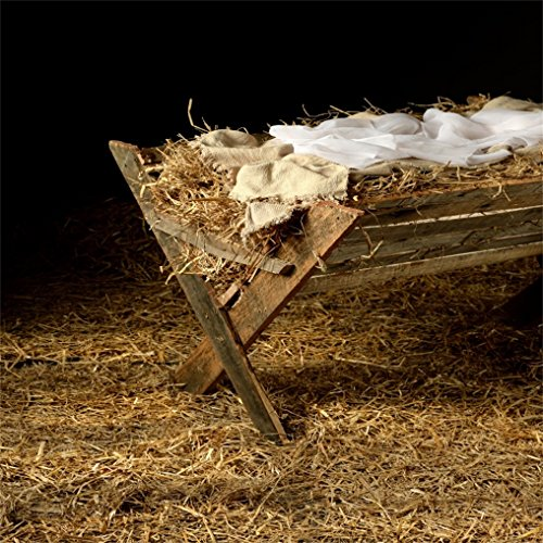 - AOFOTO 5x5ft Vintage Manger Filled with Hay Background Barn Crib Birth of Christ Child Photography Backdrop Stable Newborn Jesus Nativity Photo Studio Props Kid Baby Infant Portrait Xmas Wallpaper