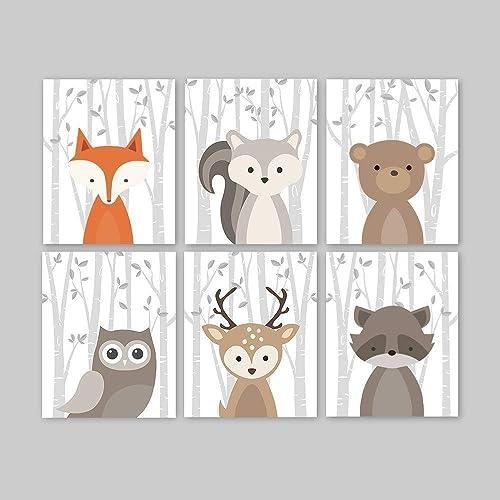 6 Bear Deer Fox Owl Squirrel Raccoon Woodland Animals Forest Nursery Art Prints