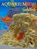 Goldfish Aquarium - A Goldfish Aquarium for your home!