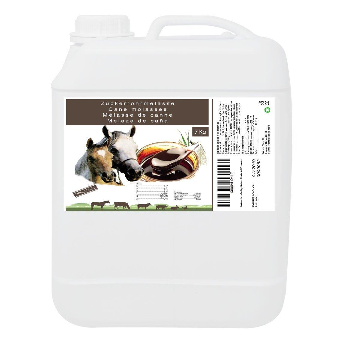 Mélasse de Canne 7 kg, Complément de Haute Valeur Énergétique, Usage Animale, Recommandé pour Les Chevaux. Produit CE. Nortem Biotechnology
