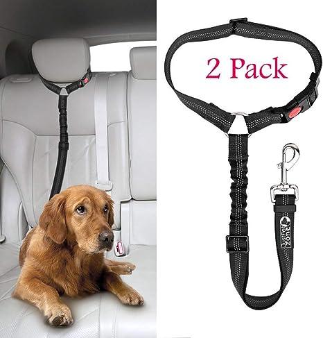 Just Pet Zone - Cinturón para reposacabezas de Coche para Perro, 2 ...