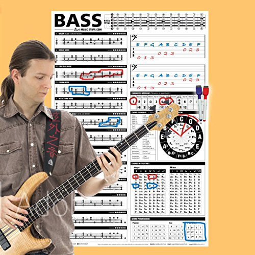Interactive Bass (Creative Bass Poster - Interactive Theory Chart • Creative Bass Reference Poster 24