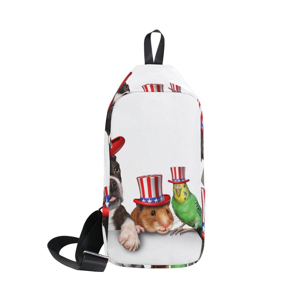 DragonSwordlinsu COOSUN - Mochila de Hombro para Mascotas Americanas, Día de la Independencia: Amazon.es: Deportes y aire libre