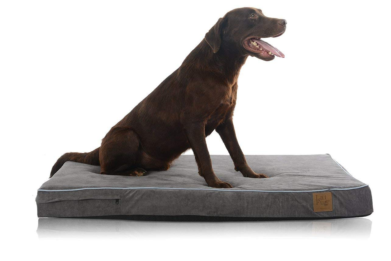 Laifug Orthopedic Memory Foam Pet/Dog Bed with Durable Water Proof Liner and Removable Designer Washable Cover, 46'' L x 28'' W x 4'' H, Slate Grey by Laifug