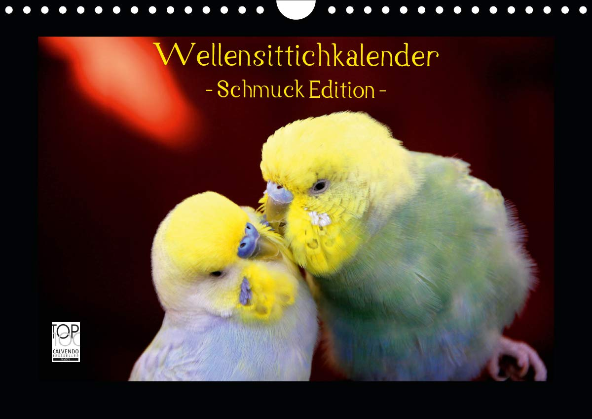 Wellensittichkalender   Schmuck Edition  Wandkalender 2020 DIN A4 Quer