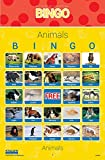 Stages Learning Materials Link4fun Real Photo Bingo Game Set for Family, Preschool, Kindergarten, and Elementary Education