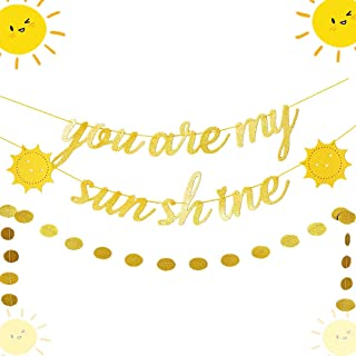 JeVenis Set of 2 You Are My Sunshine Banner Sun Banner You Are My Sunshine Birthday Decoration for Baby Shower Kid's Birthday Party Decorations