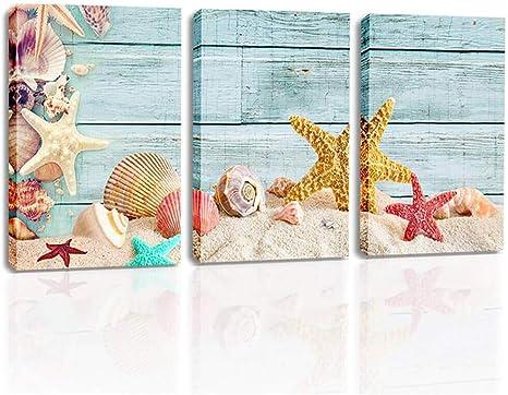 STARFISH SEA SHELLS BEACH MARITIME PHOTO ART PRINT POSTER PICTURE BMP992B