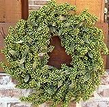 "Flora Decor Bountiful Berry Wreath 24"" - Melon Green"