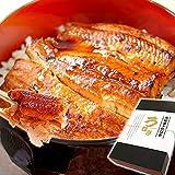 お中元 ギフト うなぎ グルメギフト 国産鰻(うなぎ)蒲焼 2枚 85~95g (ギフトBOX)
