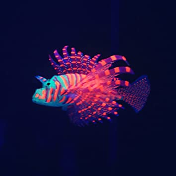 Legendog Peces Flotantes Artificiales Peces Coloridos Brillan En La Oscuridad Adornos de Pescado Decoración del Acuario: Amazon.es: Productos para mascotas