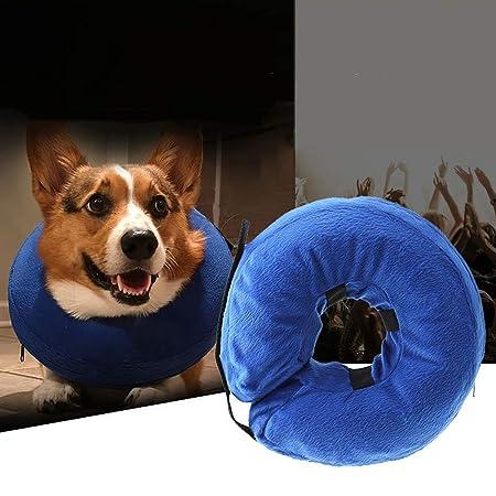 Weehey Mascota Perro Recuperación Collar Protector Inflable ...