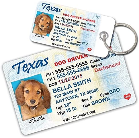 Buy Tags Id Amazon In And 2 Card Driver in Personalized Wallet Cat India Texas Pooch Dog Cats At For Custom Pet - Online Cute License Dogs Prices Tag Low Pets 1