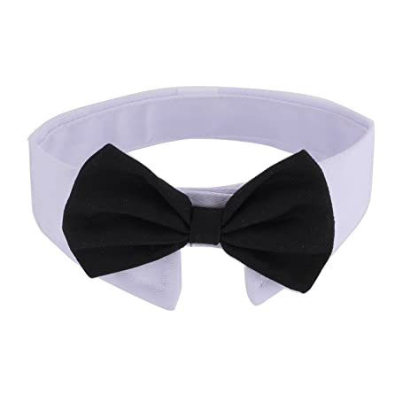 Simple Collar Bow Adorable Dog - 618l-CHYT9L  Graphic_308557  .jpg