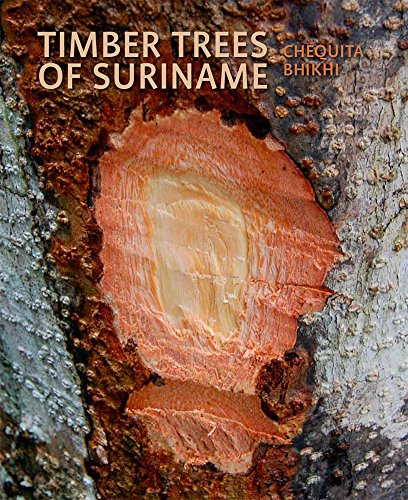Timber Trees of Suriname