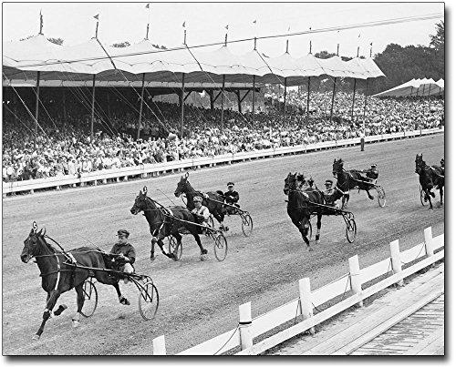 Horse Harness Racing at Hambletonian Stakes 8x10 Silver Halide Photo Print