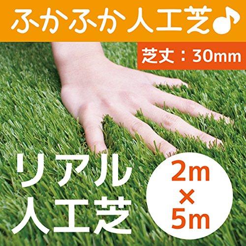 まるで本物のような質感 ふかふかで気持ちがいい人工芝 芝丈30mm 2m×5m リアル人工芝 DAIM マット ロール式 芝生 B017R2NNLG 19000