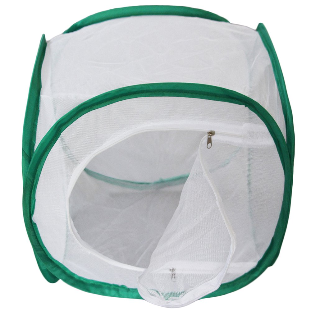 Miraclekoo Insect and Butterfly Habitat Terrarium Pop-up (12 x 12 x 12 inch)