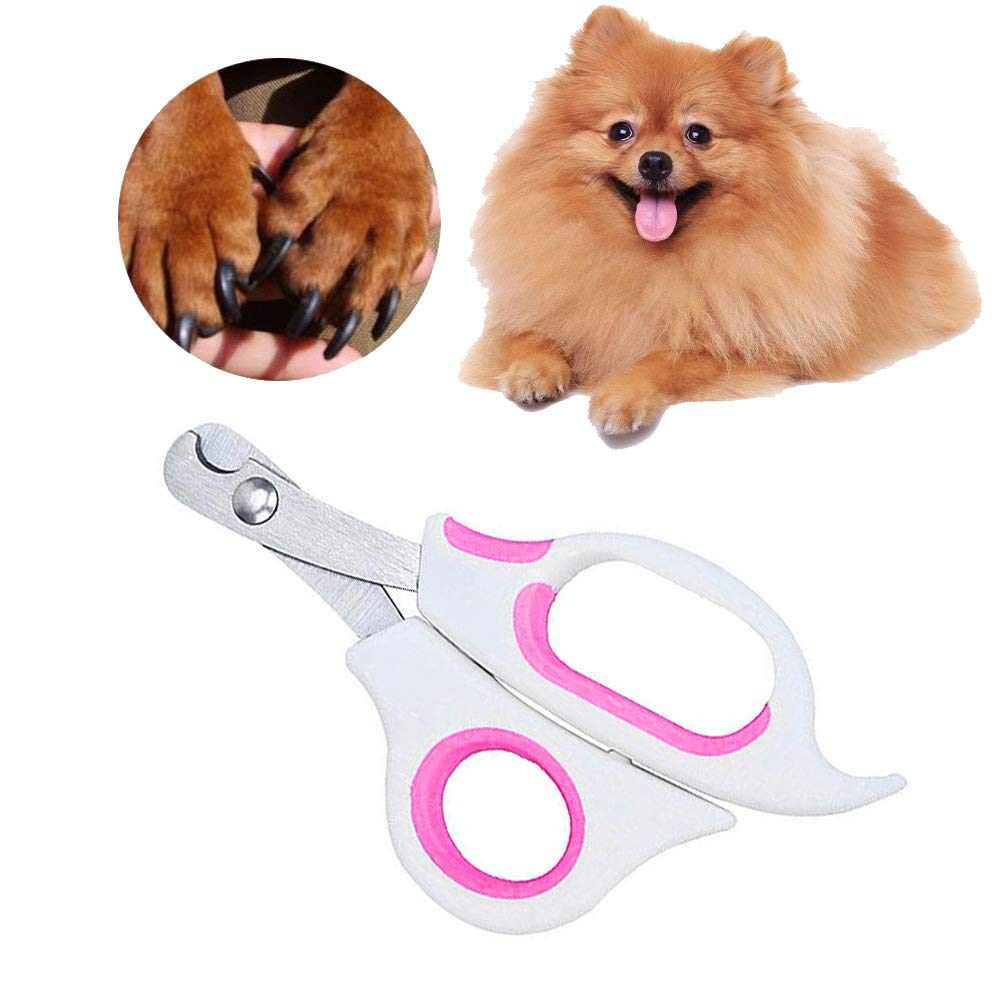 Buy Sage Square Pet Paw Scissor Nail Cutter Cum Clipper for Pets for  Dog/Cat/Puppy/Kitten (Pink) Online at Low Prices in India - Amazon.in