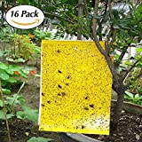 Best Trap For Leaf Miners - JTHM Dual-sided Yellow Sticky Fly Trap, for Leaf Review