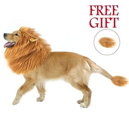 Dog Mane LionPETPA Cool Cute Lion Mane for Dog Costume - Make Your Dog  sc 1 st  Amazon.com & Amazon.com : Dog Mane Lion PETPA Cool Cute Lion Mane for Dog ...