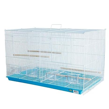 Dizelin Jaula para Aves 1 Unidad 1700 g: Amazon.es: Productos para ...