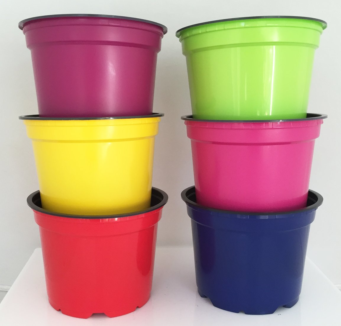 Nutley's Coloured Plant Pots, 12cm (24) Nutley's