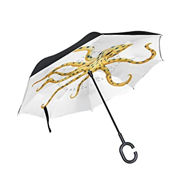 ALAZA - Paraguas de viaje para mujer y hombre, doble capa, con anillas de