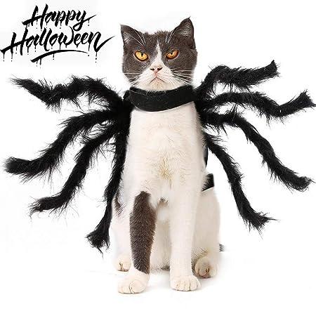 LIANGZHI Gato Disfraz De Halloween Simulación Peluche Araña ...
