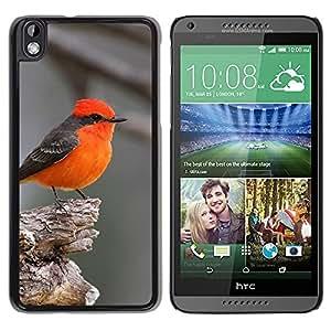 Red Bird Songbird gris lindo Pequeño Tiny- Metal de aluminio y de plástico duro Caja del teléfono - Negro - HTC DESIRE 816