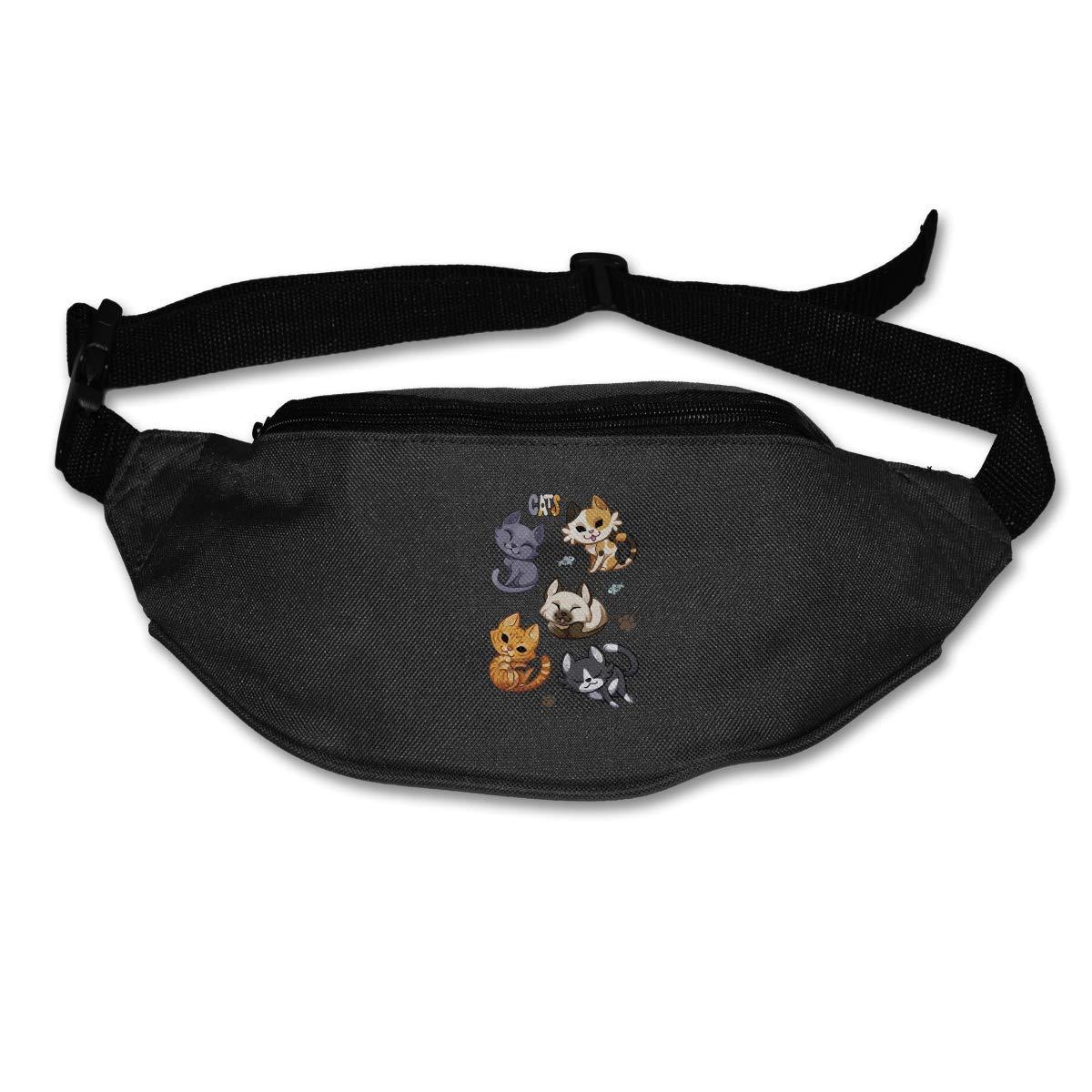 Waist Purse Cute Cats Unisex Outdoor Sports Pouch Fitness Runners Waist Bags