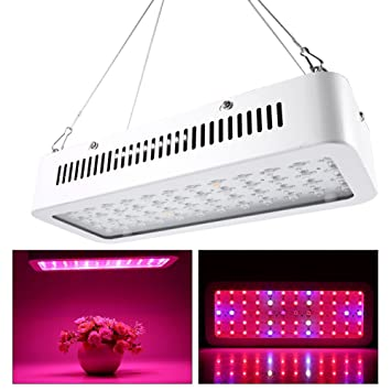 600W LED Growing Light High Yield Full Spectrum Indoor Hydroponic Plants Veg Bloom Panel L&  sc 1 st  Amazon.com & Amazon.com : 600W LED Growing Light High Yield Full Spectrum Indoor ...