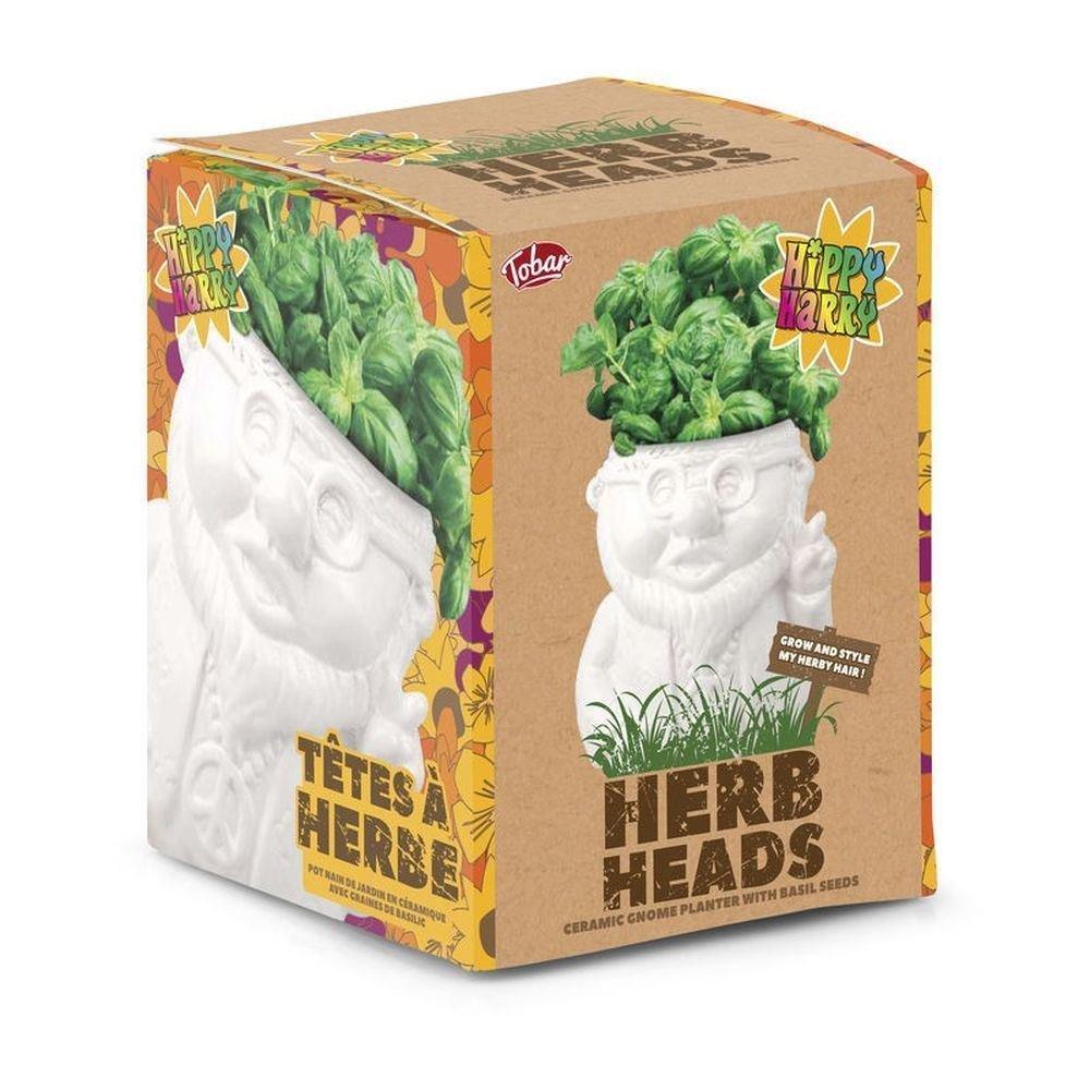 Amazon.com : Herb Heads Hippy Harry Grow Basil Plants Kitchen Garden In  Ceramic Pot : Garden U0026 Outdoor