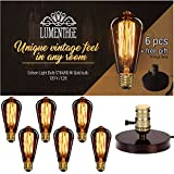Lumentage Ultimate - Loft - Edison bulb Antique style TOP Premium Retro Squirrel Cage Filament bulb by Lumentage - ST64 - 6 pack - 60W - Tear Drop Top - Indoor, Outdoor Use + Bedroom Lamp