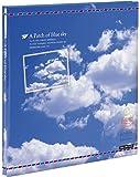 ナカバヤシ ファイル フヤスアルバム 10枚 Lサイズフリー台紙 10L-1206