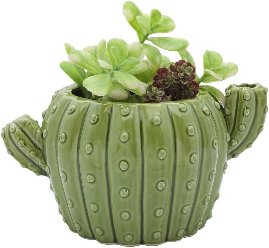 Streamline Cactus Shaped Ceramic Flower Planter Pot