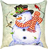 Manual Woodworkers & Weavers Indoor/Outdoor Climaweave Throw Pillow, it's Cold Outside, 18''