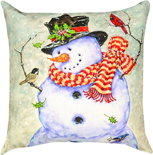 Manual Woodworkers & Weavers Indoor/Outdoor Climaweave Throw Pillow,  it's Cold Outside, 18