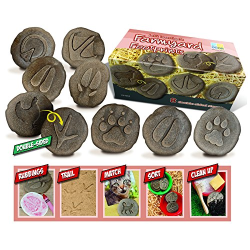 (Yellow Door YUS1065 Let's Investigate Farmyard Footprints Stone (Pack of 8))