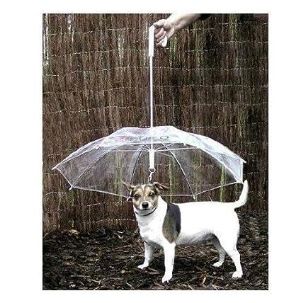 Paraguas para mascotas (paraguas para perro) mantiene a su mascota seca y cómoda en