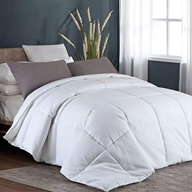 Queen Goose Down Alternative Quilted Comforter with Corner Tabs - Hypoallergenic -Double Plush Fabric -Super Microfiber Fill -Machine Washable - Duvet Insert & Stand-Alone Comforter - White-All Season