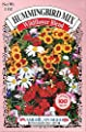 American Seed Hummingbird Mix, Wildflower Blend, 100 Square Foot Shaker Box (2 Ounce)
