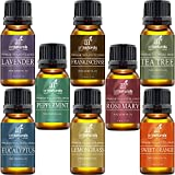 Image of Art Naturals Top 8 Essential Oils - 100% Pure Of The Highest Quality Essential Oils - Peppermint, Tee Tree, Rosemary, Orange, Lemongrass, Lavender, Eucalyptus, & Frankincense - Therapeutic Grade