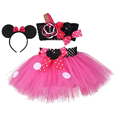 Birthday Minnie Costume for Kids Girls 1st 2nd 3nd 4th Birthday Party Tutu Dress Outfits: Clothing
