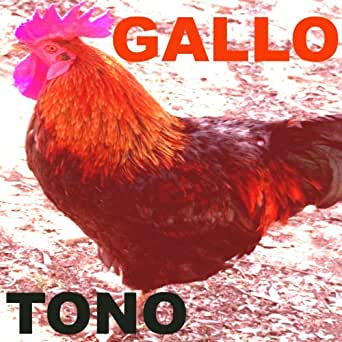 Amazon.com: Tono Gallo: Tonos para Celulares: MP3 Downloads