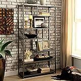 Furniture of America CM-AC521 Susie Powder Coated Gray Display Shelf
