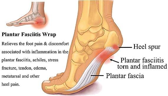 Amazon Heel Support Plantar Fasciitis Foot Support Heel Pain