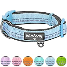 """Blueberry Pet Soft & Comfy 3M Reflective Pastel Color Padded Dog Collar, Baby Blue, Small, Neck 12""""-16"""", Adjustable Collars for Dogs"""